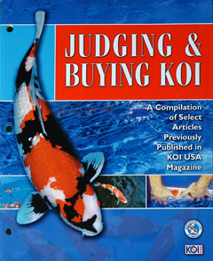 judging and buying koi